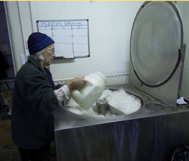 Vasker ull til lager