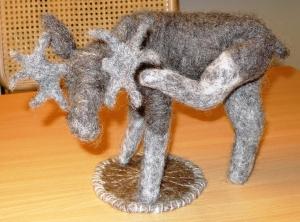 grå trønder elg