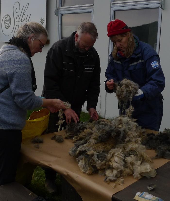 Kursdeltakere sortrer egen ull utenfor Selbu spinneri. Vi var heldige med været!